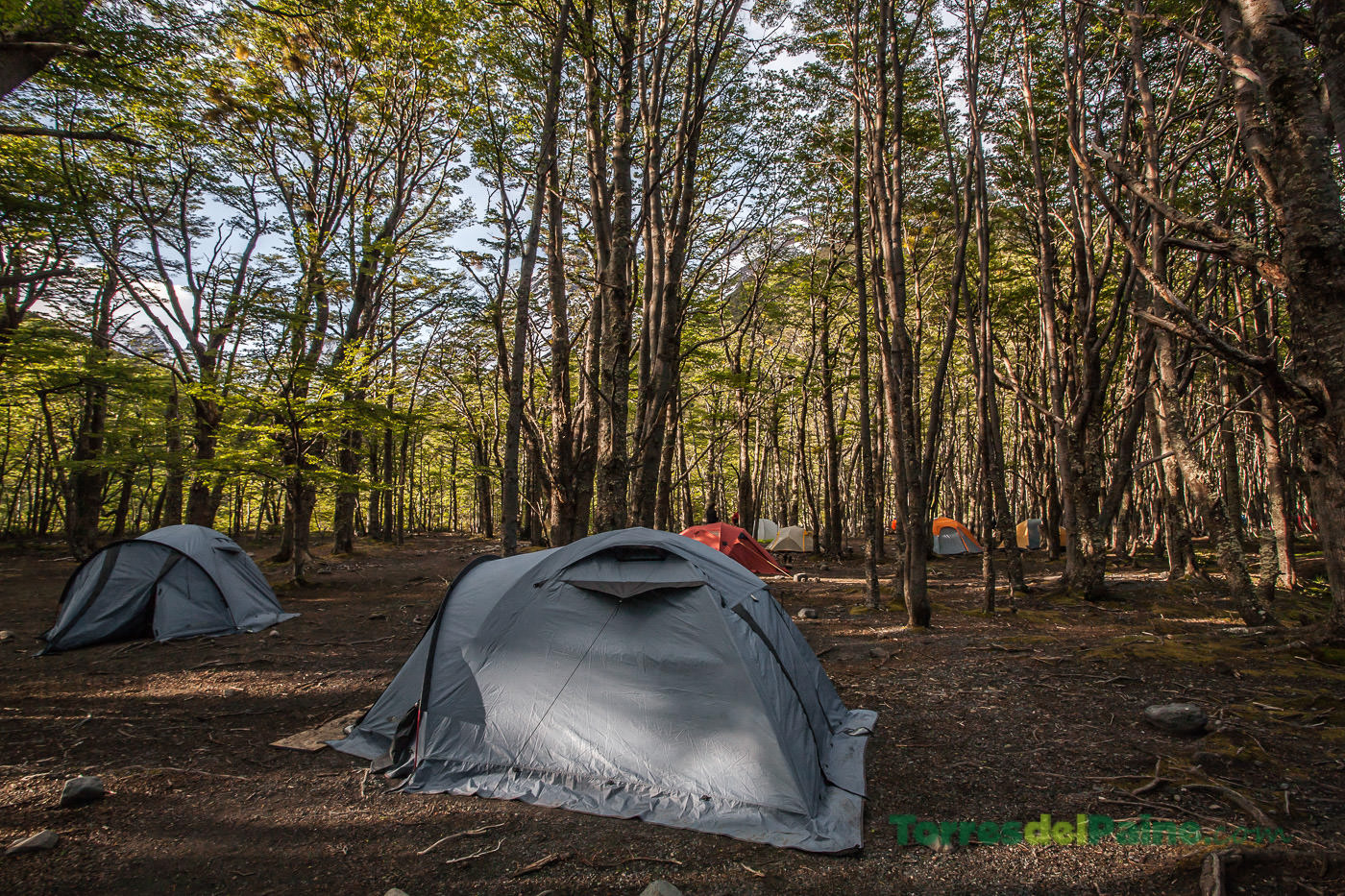 Circuito W Torres Del Paine Camping : Camping los perros torres del paine torresdelpaine